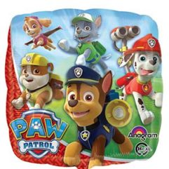 18in paw patrol Balloon Delivery